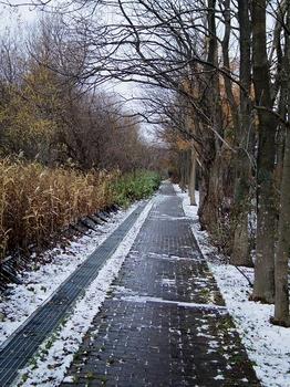 11.11.16.初雪s.jpg