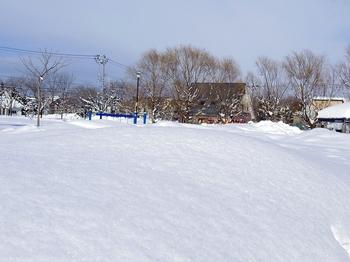12.1.19.くるみ公園1s.jpg