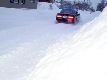 12.12.23.雪の中●.JPG