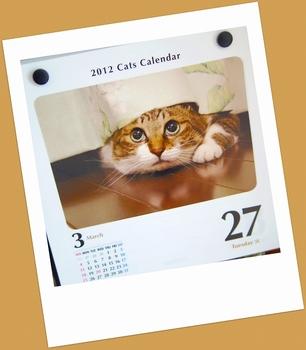 12.3.27.猫日めくりs.jpg