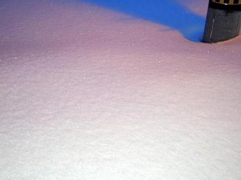 13.1.24.光る雪.JPG