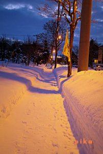 13.12.26.雪道.JPG