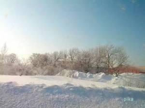 14.2.25.朝の風景.jpg