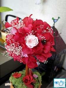 14.3.19.薔薇2.JPG
