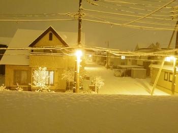 11.12.3.夜景1s.jpg