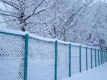 12.1.2.雪の朝3s.jpg