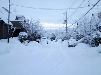 12.1.2.雪の朝s.jpg