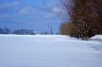 12.2.20.散歩道2s.jpg