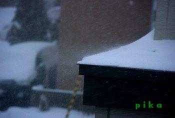13.12.15.吹雪く.JPG