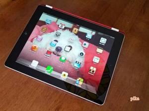13.3.6.iPad.jpg