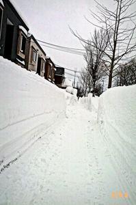 14.1.24.雪道.jpg