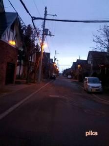 14.12.1.雪の無い朝.jpg