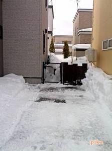 15.2.21排雪8回目.jpg