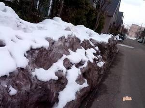 15.3.16.汚れた雪.jpg