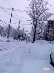 15.3.5.雪景色2.jpg
