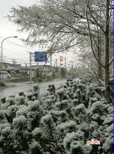 網走 雪.JPG