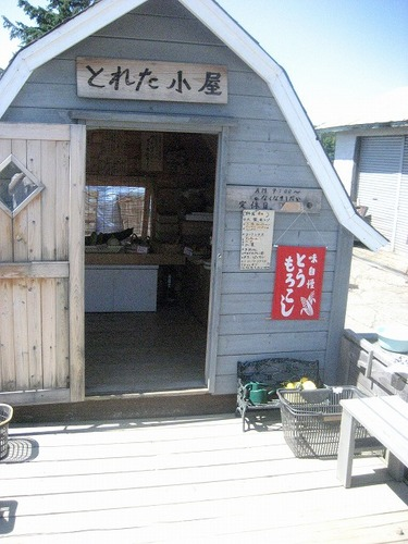 s-10.8.18.野菜販売所.jpg